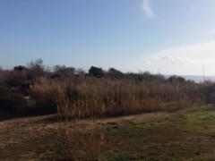 Detached villa Campomarino mt.dal mare 150 - 10